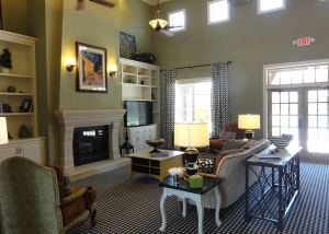 Cypress Creek Apartment Homes at Joshua Station - Family Room